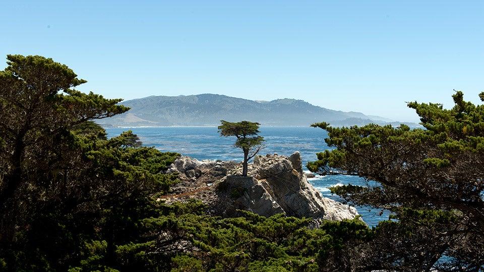 17-Mile Drive - Monterey, California