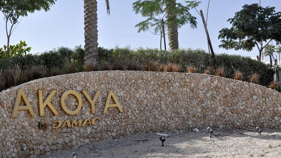 Akoya1.jpg