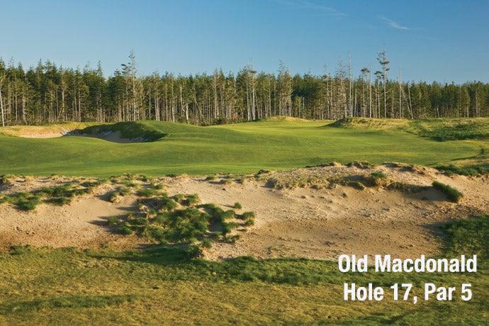Old Macdonald: Hole 17, Par 5
