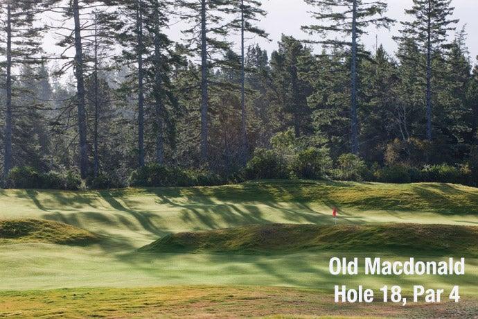 Old Macdonald: Hole 18, Par 4