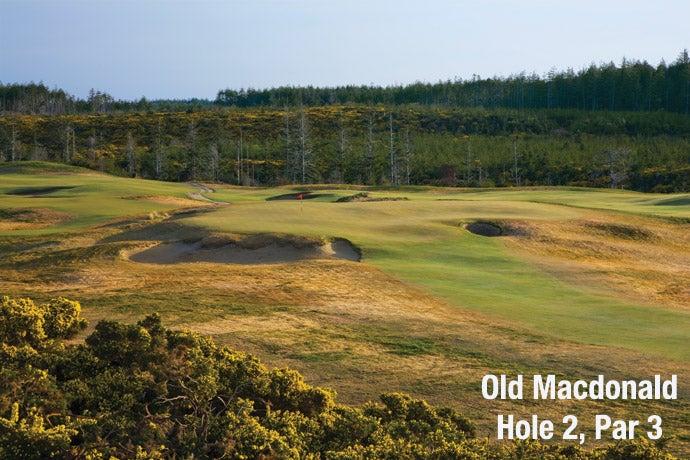 Old Macdonald: Hole 2, Par 3
