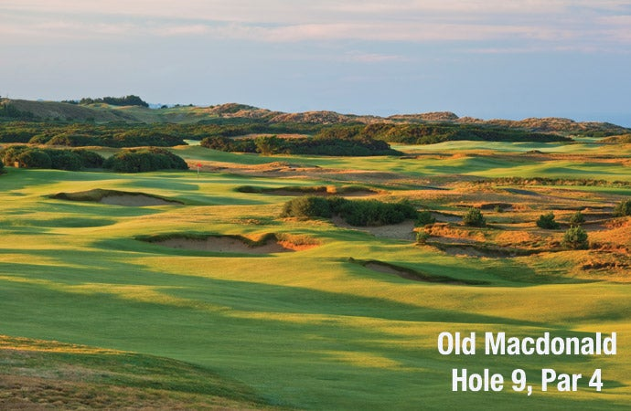 Old Macdonald: Hole 8, Par 3