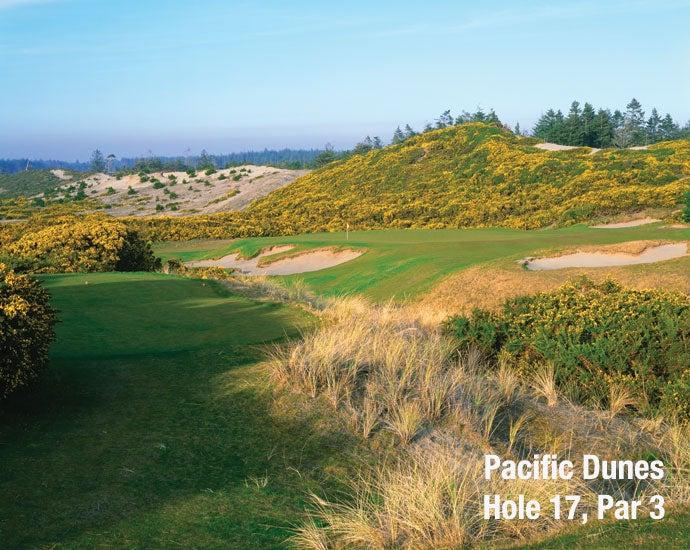 Pacific Dunes: Hole 17, Par 3