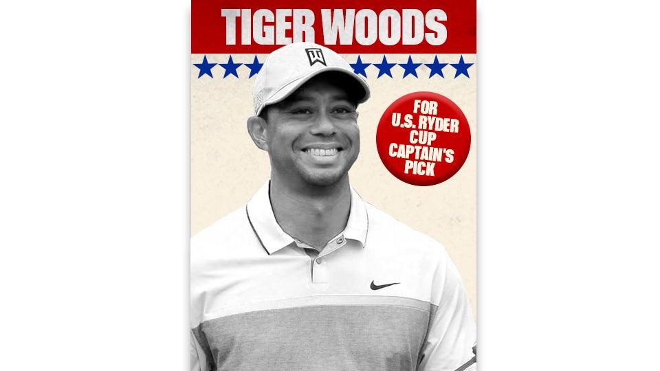 Ryder Poster_Woods_960.jpg