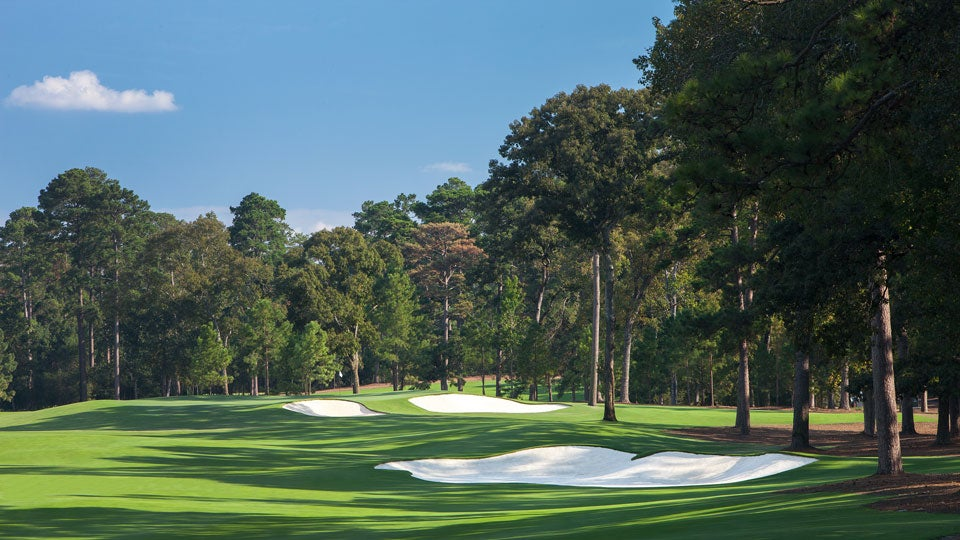 Tiger-Course.jpg
