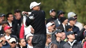 Tiger-Woods_6.jpg