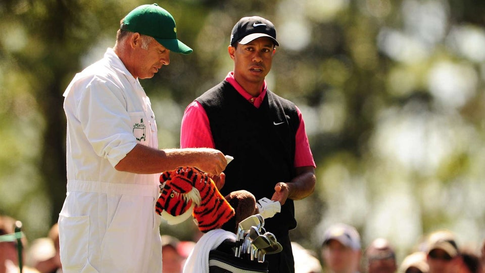 Tiger and Stevie.jpg