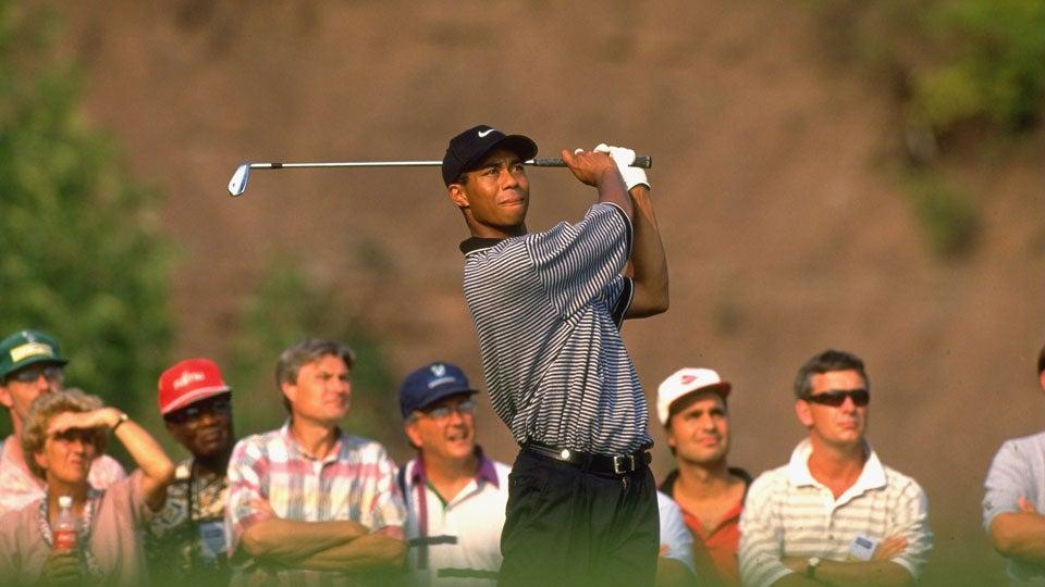Tiger1996.jpg