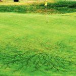golf1_0-lightning.jpg
