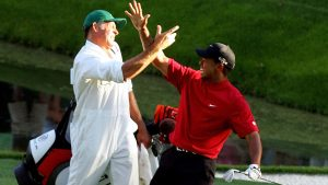 tiger high five.jpg