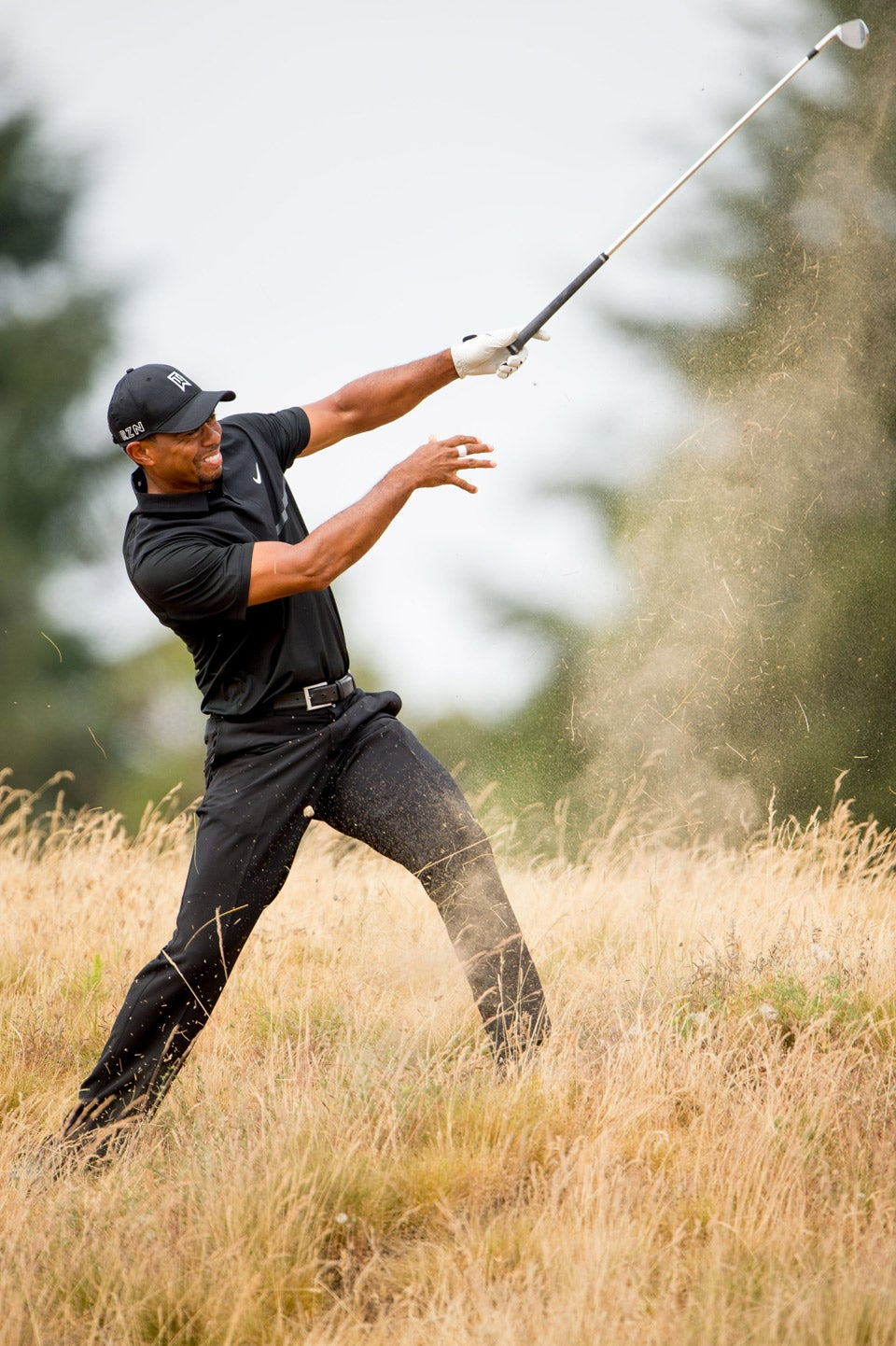 tiger-tout-chambers-bay-article-club-throw.jpg