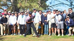 tiger-woods-morfit_640.jpg