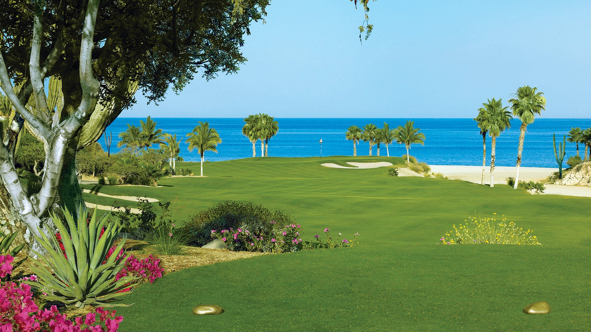 palmilla-one-only.jpg