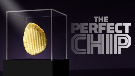 perfect-chip.jpg