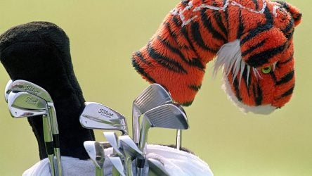 tiger-2000-irons.jpg