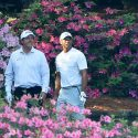 tigerphilflowers.jpg