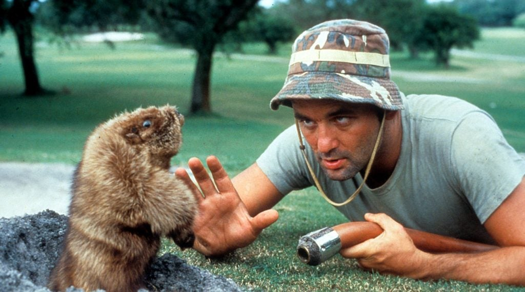 One in three respondents have not yet seen Caddyshack.