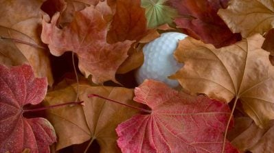 Rules Guy: If I lose my ball in the leaves, am I entitled to free relief?