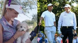 Lexi's new dog was the story of last week, but Tiger and Phil will be the story of the coming week.