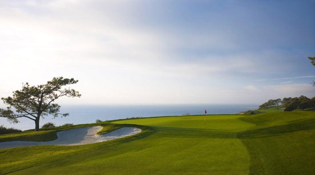 Torrey Pines has beautiful views that overlook the Pacific Ocean.