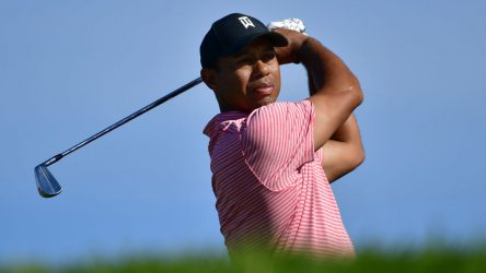 Every golfer wishes that he or she could swing like Tiger Woods.