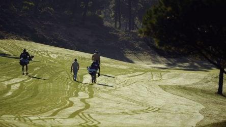 target line in the dew