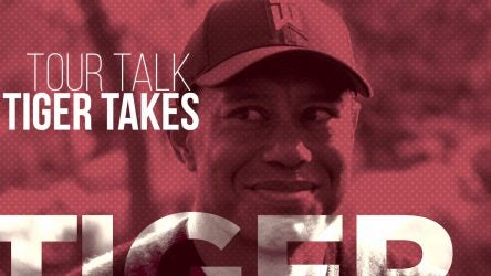 Picture of Tiger Woods smiling