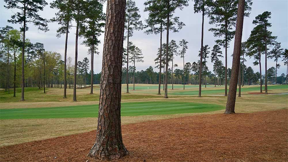 Champions Retreat has an Augusta National-like feel.