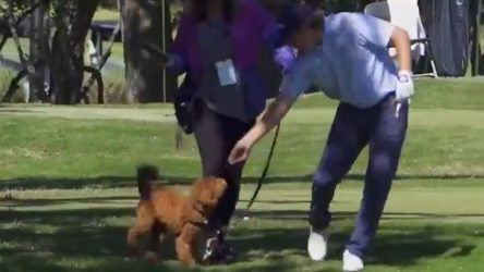 Zac Blair feeds his dog Teddy during the first round of the 2019 Dormie Network Classic.