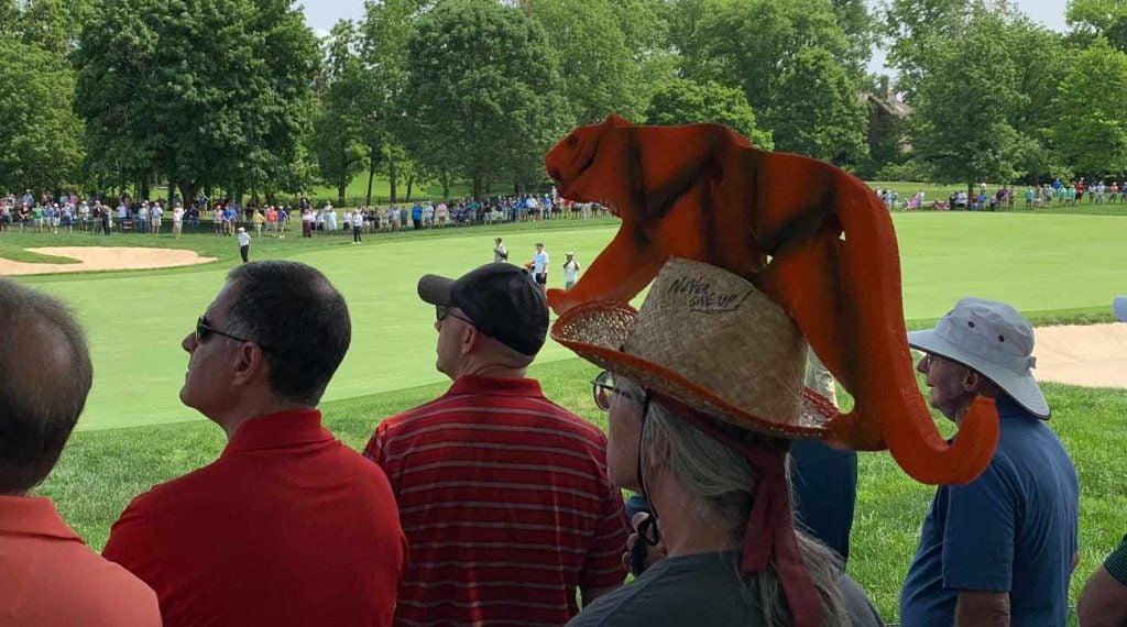 Tiger Woods inspires a rabid following.
