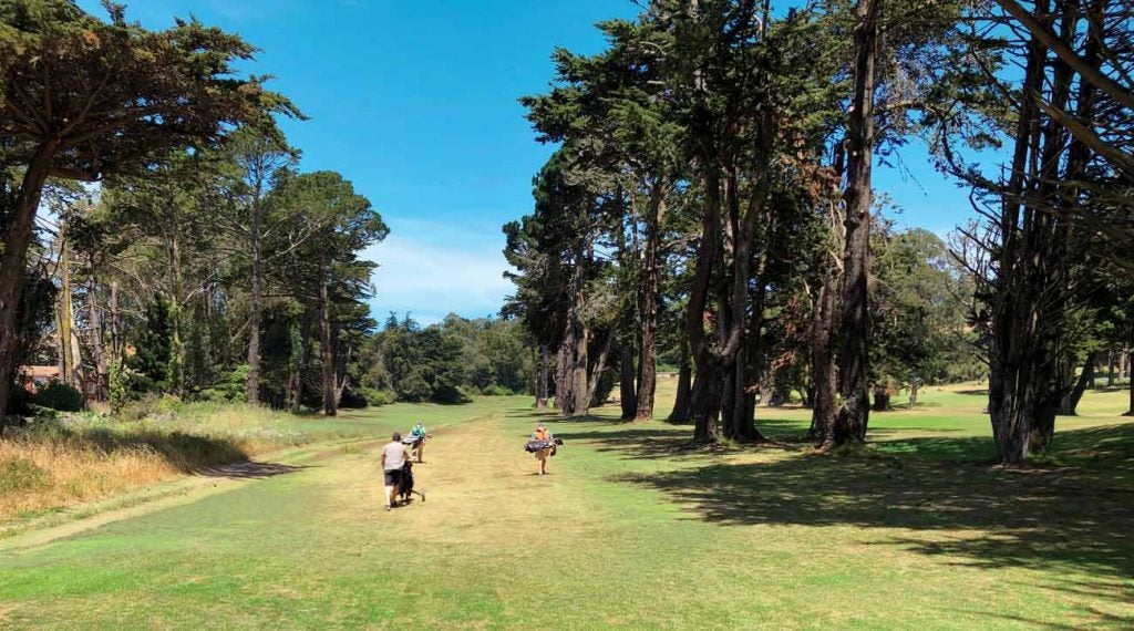 Gleneagles' towering trees feel vintage NoCal.