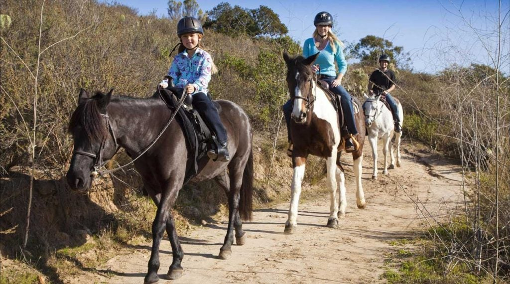 Horseback riding is an option for guests.
