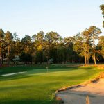 Pine Needles was designed by Donald Ross in 1927 and recently renovated in 2017 by Kyle Franz.