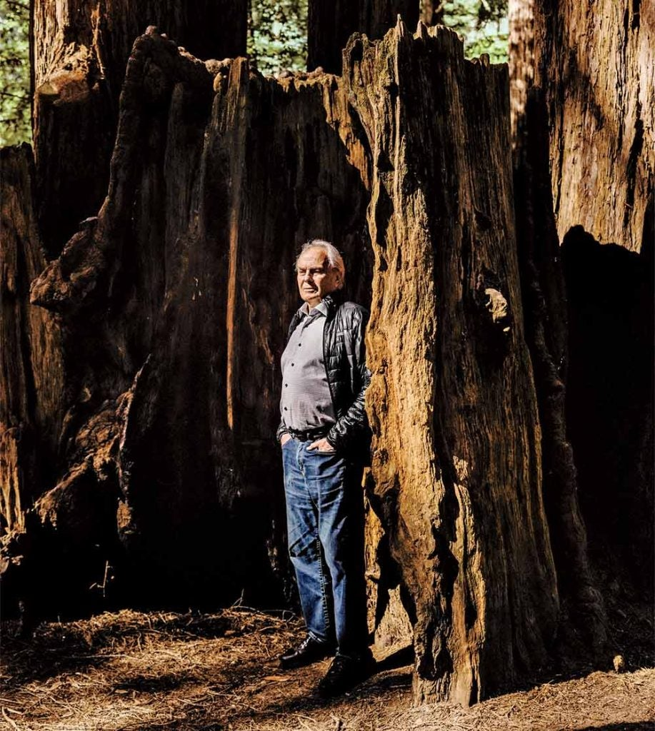 Michael Murphy among the redwoods near his Northern California home.