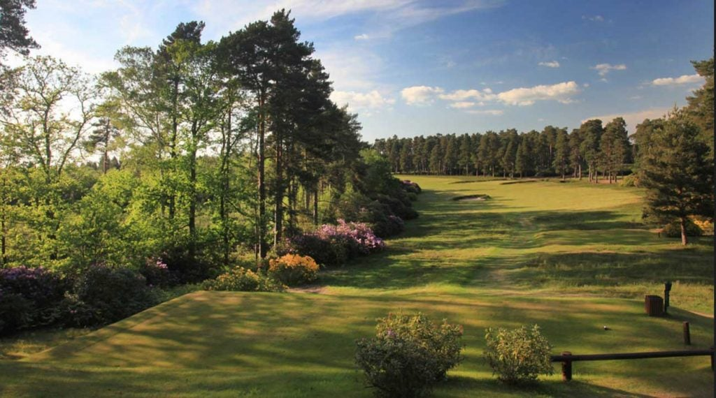 Swinley Forest moved up to No. 55.