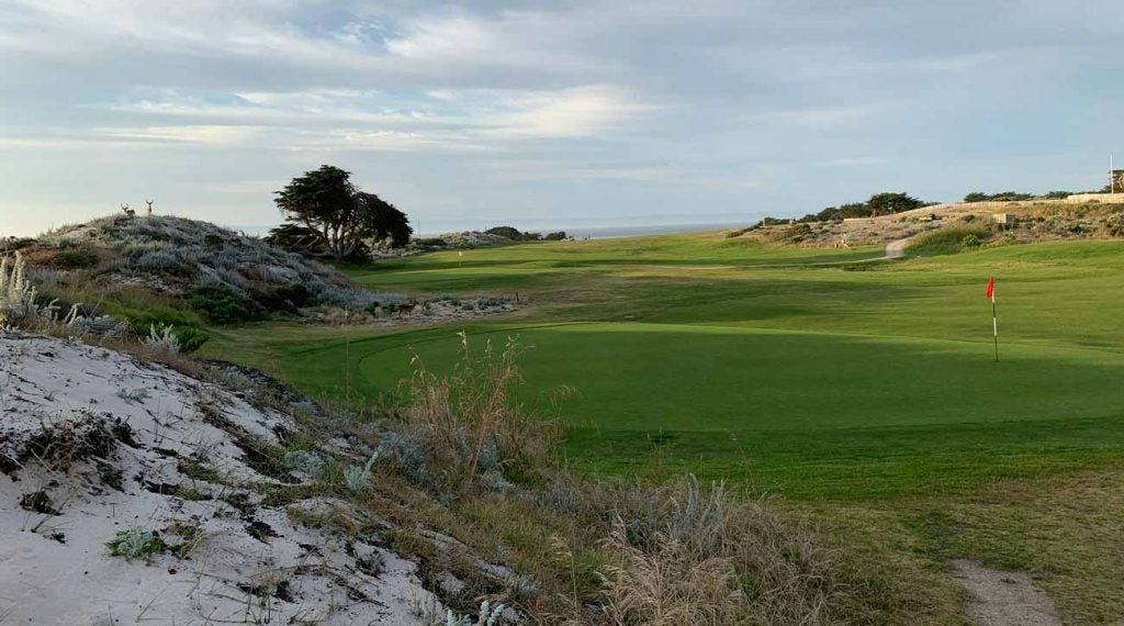 Pacific Grove Golf Links is the (worst-kept) best secret on the Monterey Peninsula.