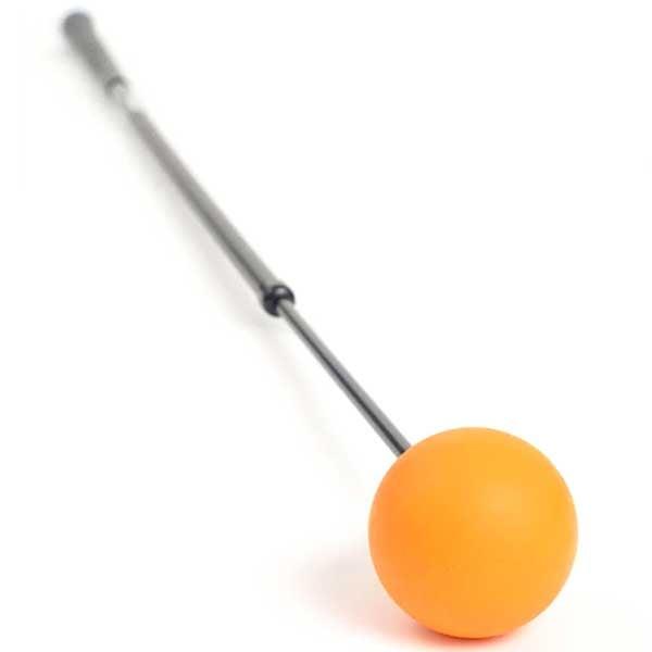 Orange Whip training aid