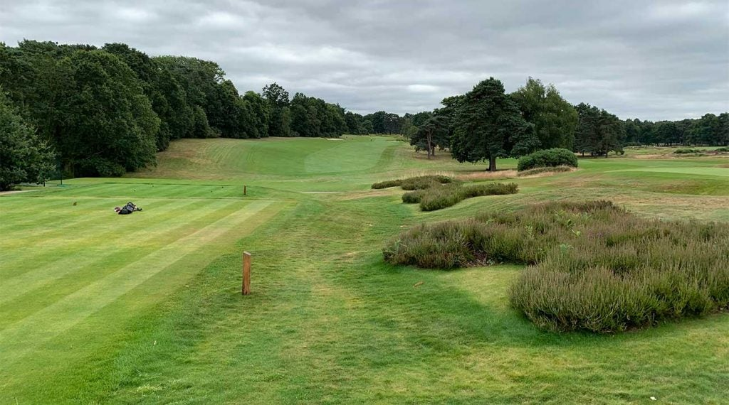 Sunningdale's Old Course gets a lot of love, but the New Course (pictured) is no slouch either.