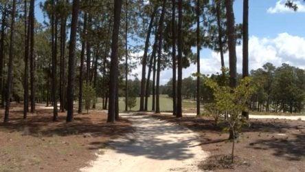sandy cart path