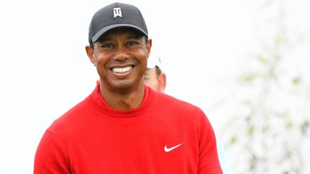 Tiger Woods is currently ranked sixth in the Official World Golf Ranking