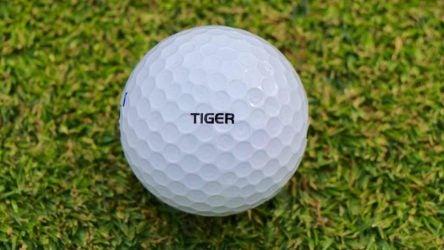 Tiger Woods put Bridgestone's Tour B XS ball through numerous rounds of prototype testing