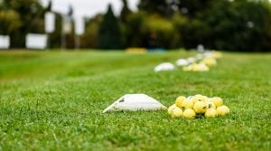Heap of golf balls ready for warm up swing. Bunch of golf balls ready on green morning lawn on golf course intended for players warming up with long drive swing.