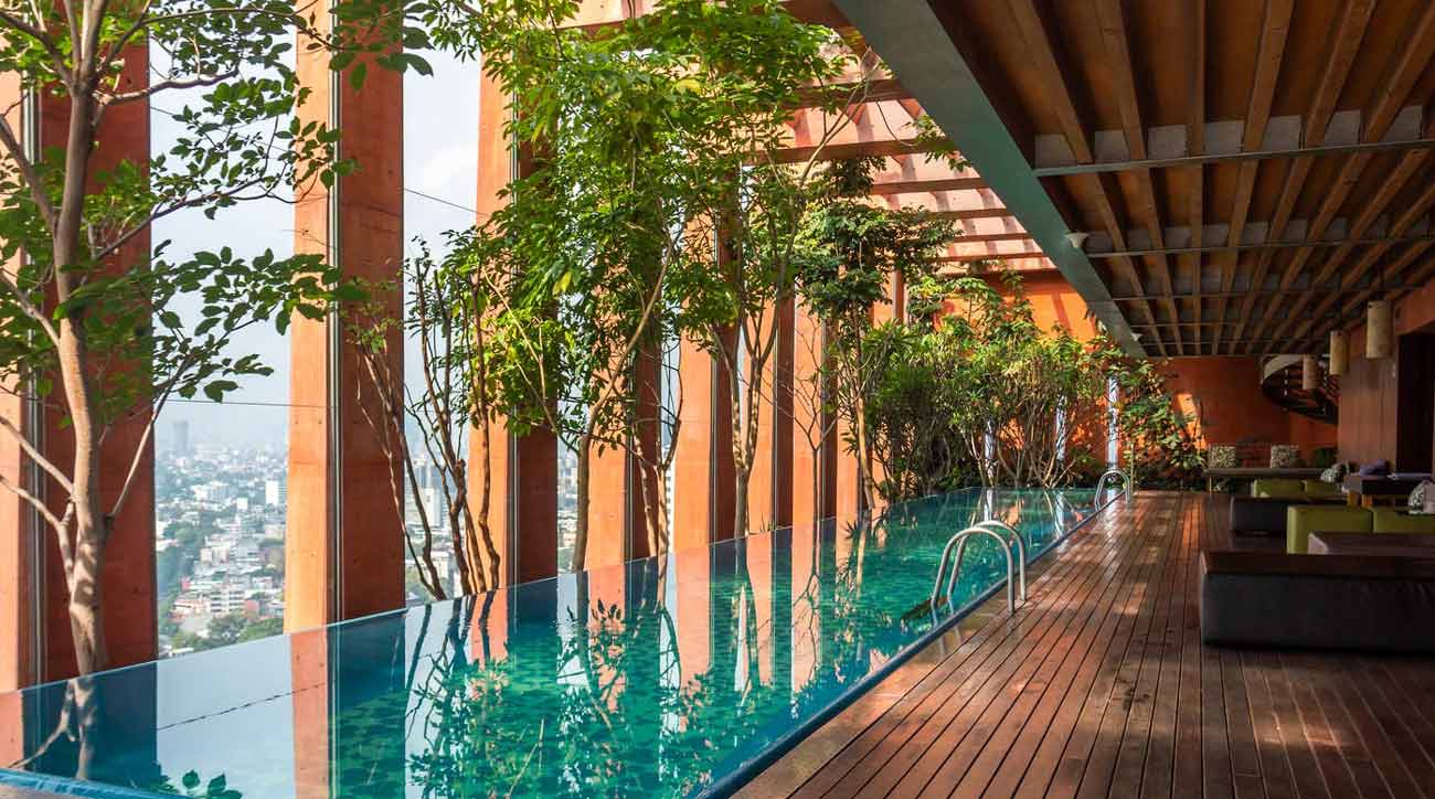 Rooftop pool in Mexico City with shade and trees