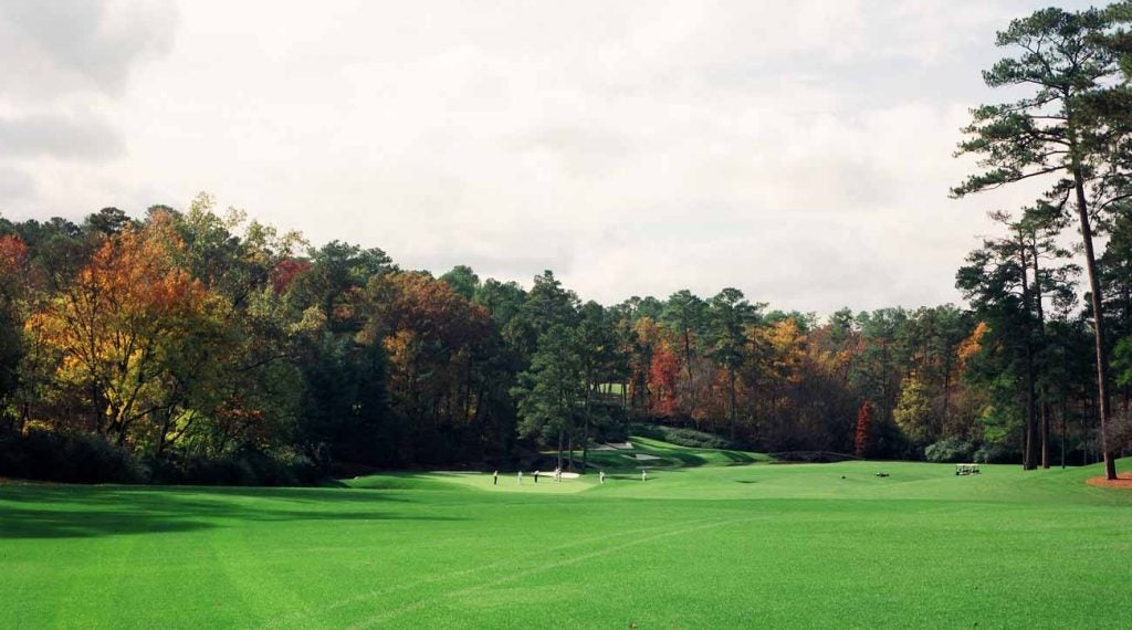 Amen Corner, in shades of green — and a little orange!