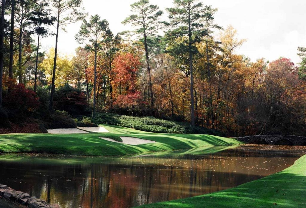Could we see some chrysanthemums planted behind No. 12 at Augusta National this fall?