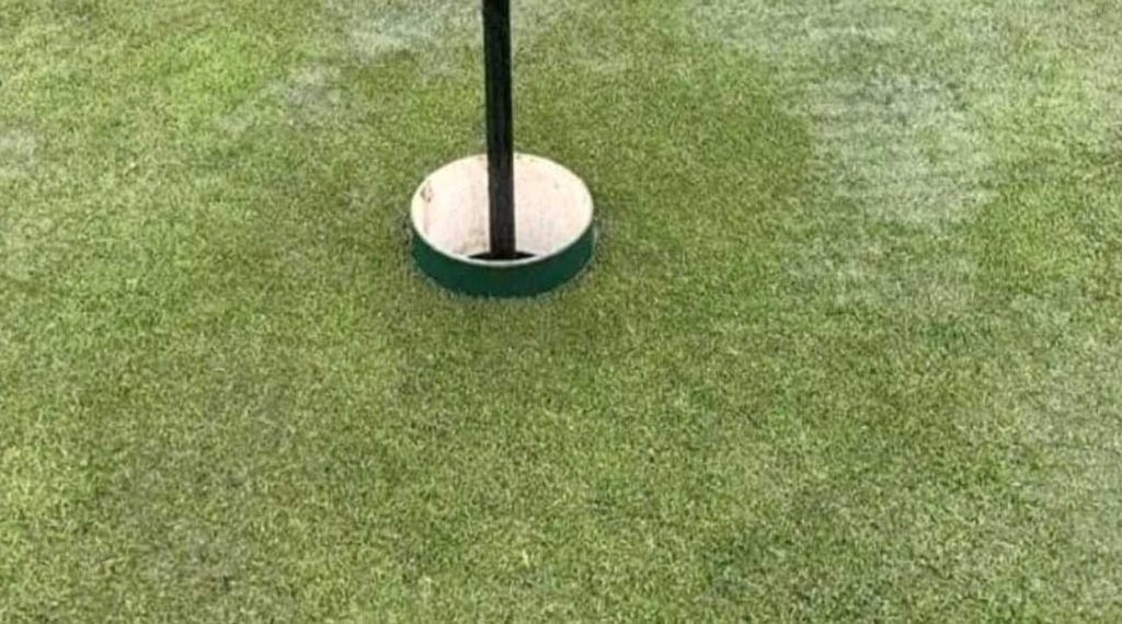 The Etiquetteist Should A Hole In One On A Raised Cup Count