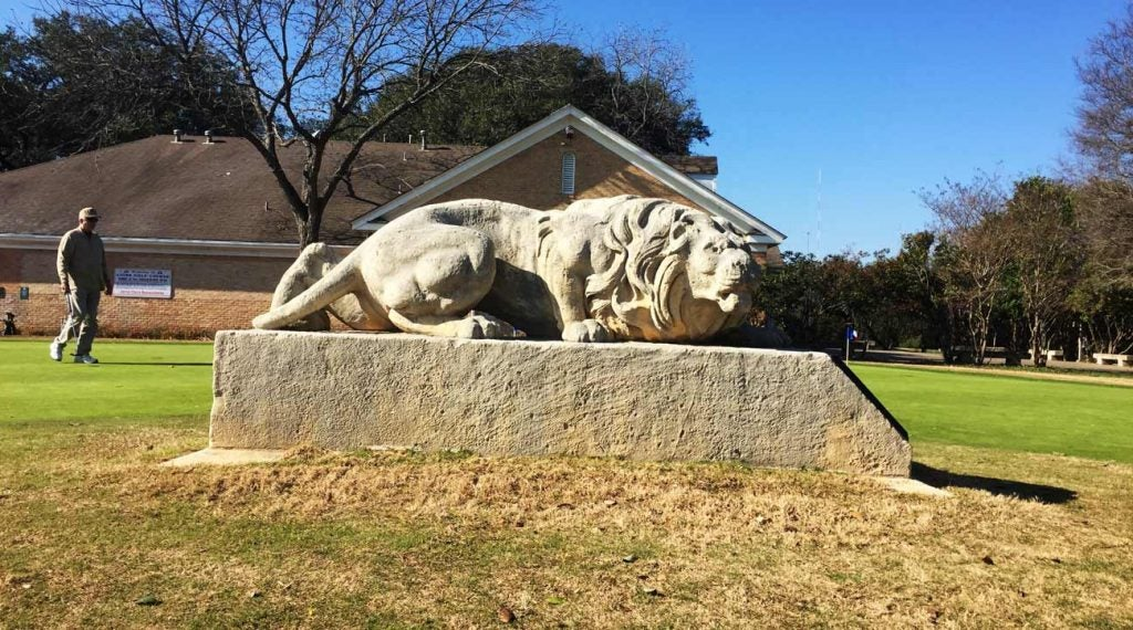 lions statue on putting green