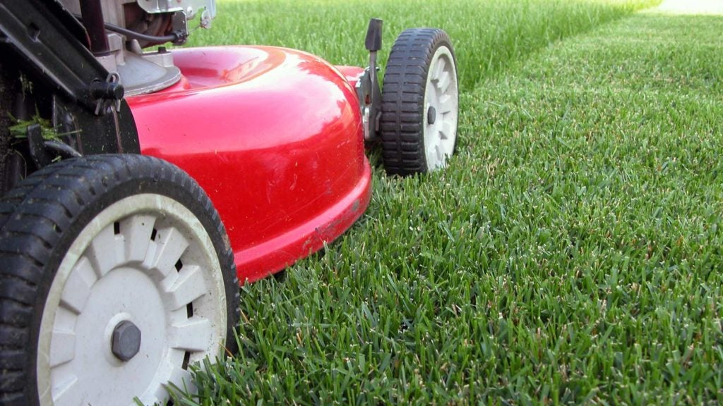 lawnmower mows grass on a golf course