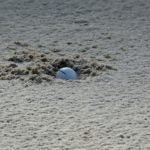 ball plugged in bunker