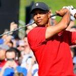 Tiger Woods watches golf shot